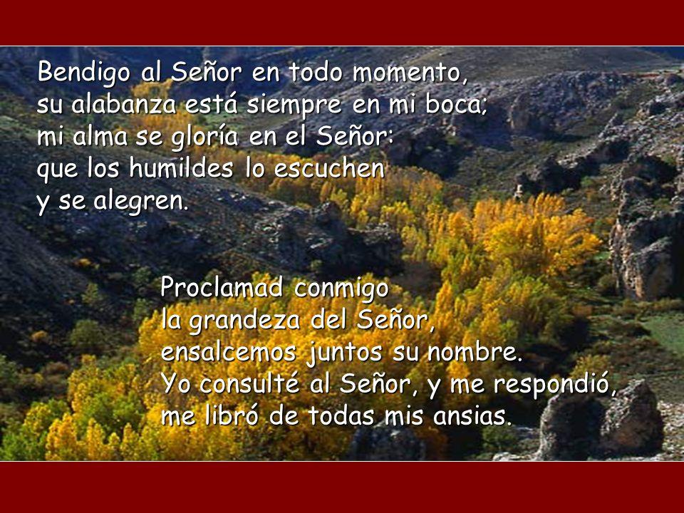 ¿De quién habla este salmo? ¿Qué categoría es invitada a dar gracias? Los