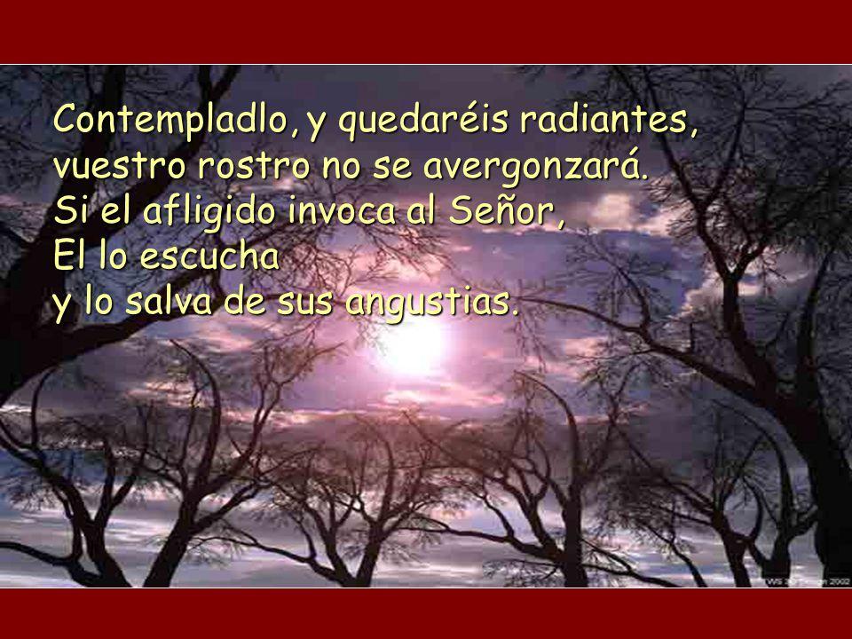 Bendigo al Señor en todo momento, su alabanza está siempre en mi boca; mi alma se gloría en el Señor: que los humildes lo escuchen y se alegren. Procl