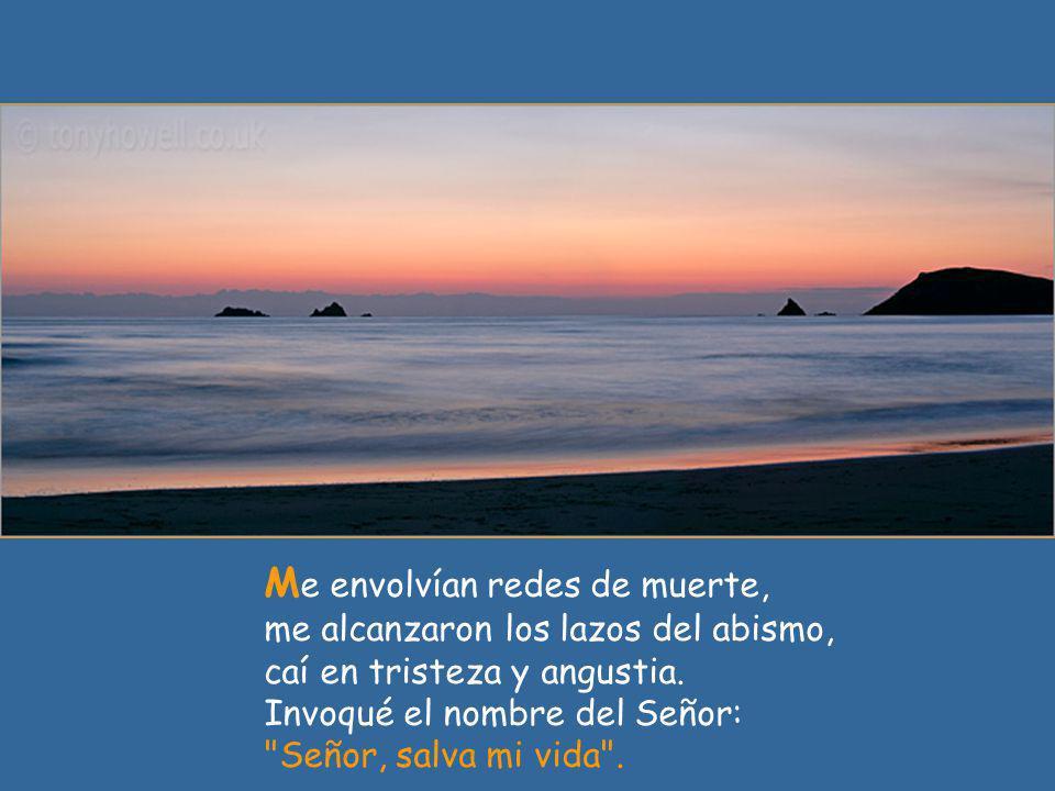 A mo al Señor, porque escucha mi voz suplicante, porque inclina su oído hacia mí el día que lo invoco.