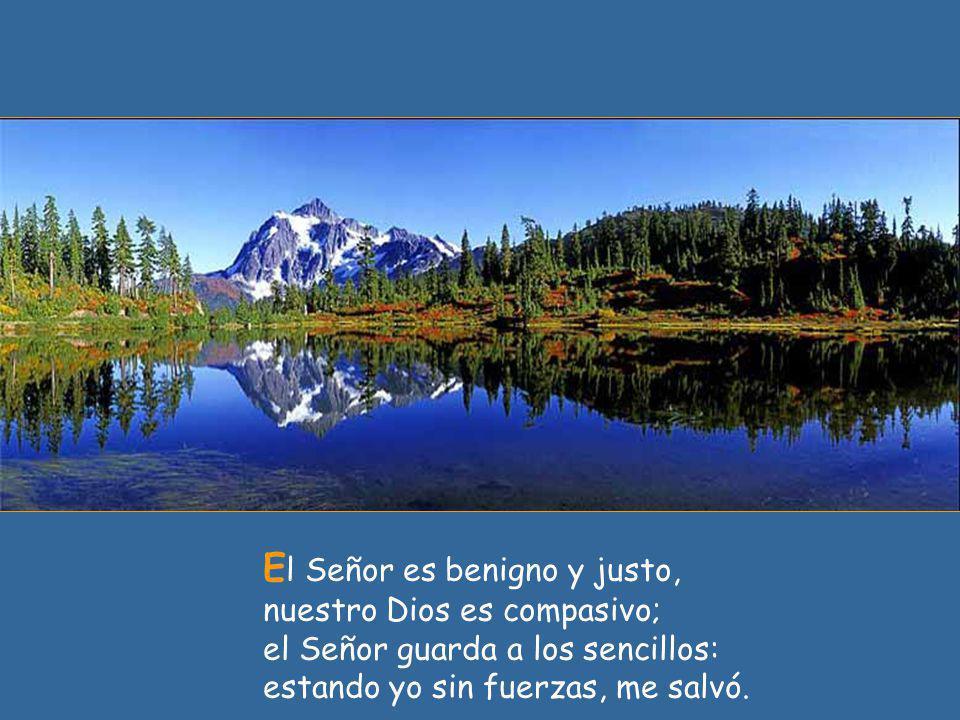 E l Señor es benigno y justo, nuestro Dios es compasivo; el Señor guarda a los sencillos: estando yo sin fuerzas, me salvó.