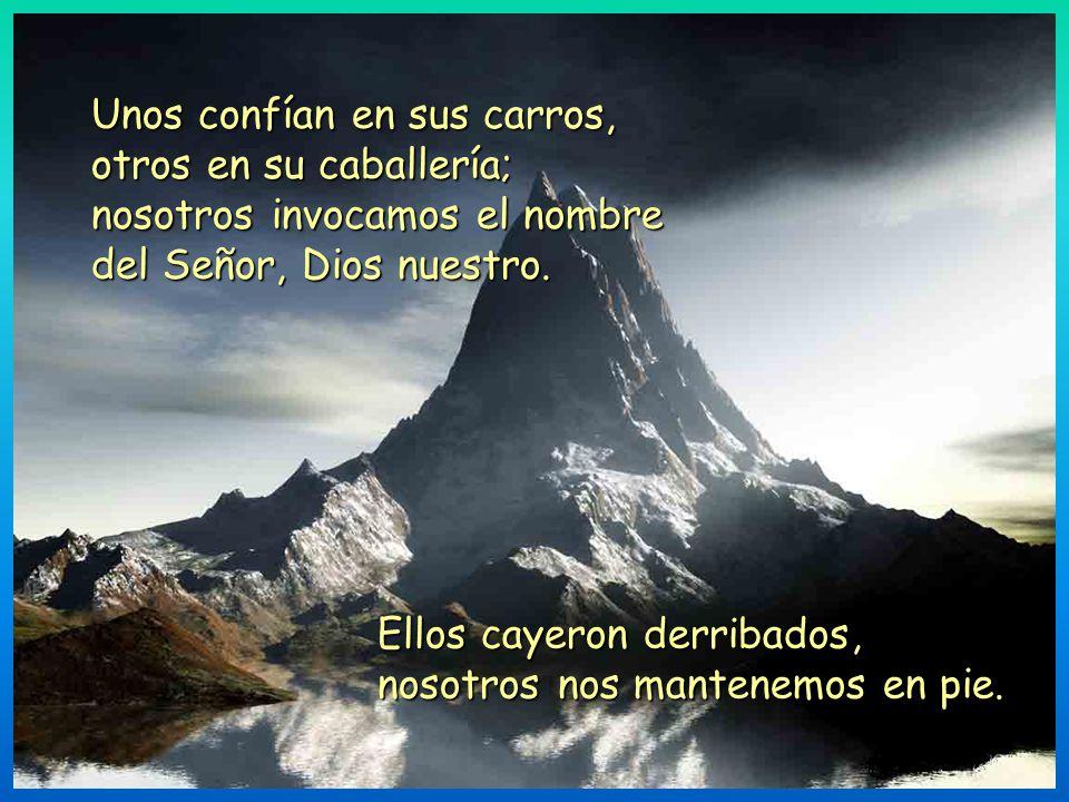 Que podamos celebrar tu victoria y en el nombre de nuestro Dios alzar estandartes; que el Señor te conceda todo lo que pides. Ahora reconozco que el S