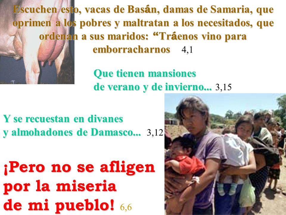 Escuchen esto, vacas de Bas á n, damas de Samaria, que oprimen a los pobres y maltratan a los necesitados, que ordenan a sus maridos: Tr á enos vino p