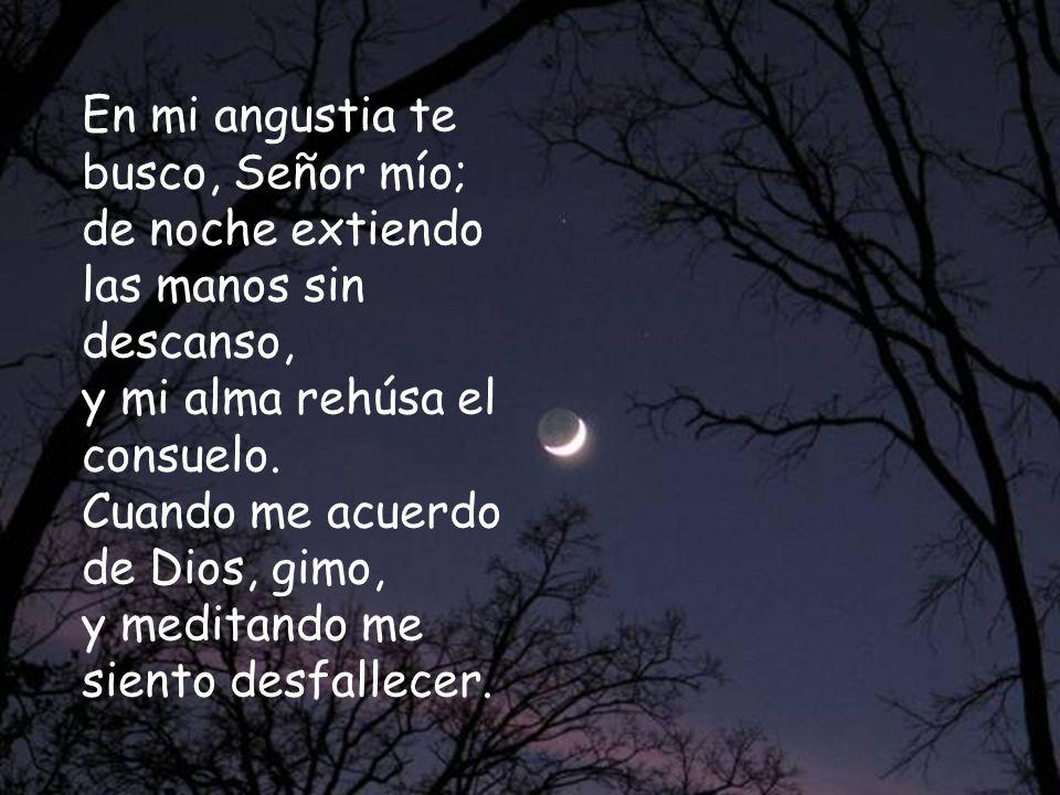 En mi angustia te busco, Señor mío; de noche extiendo las manos sin descanso, y mi alma rehúsa el consuelo.