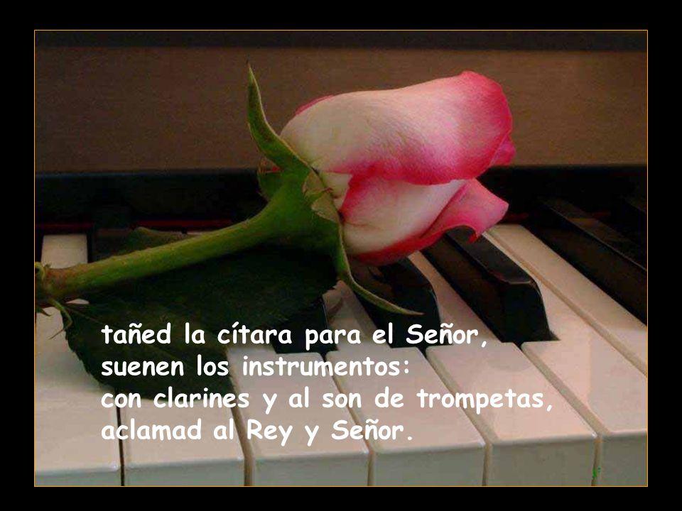 tañed la cítara para el Señor, suenen los instrumentos: con clarines y al son de trompetas, aclamad al Rey y Señor.