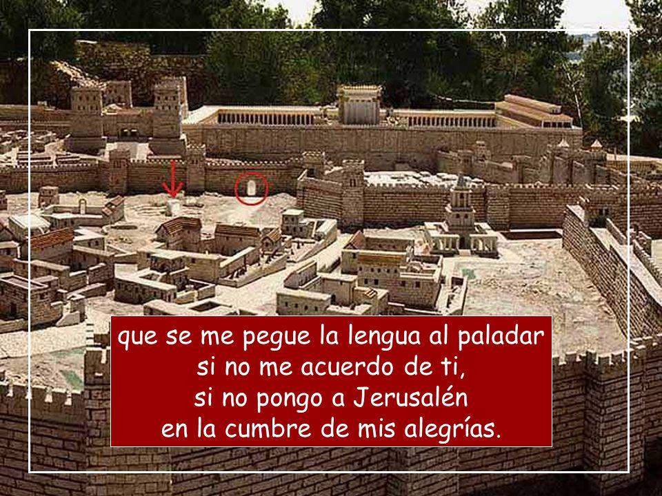 ¡Cómo cantar un cántico del Señor en tierra extranjera! Si me olvido de ti, Jerusalén, que se me paralice la mano derecha;