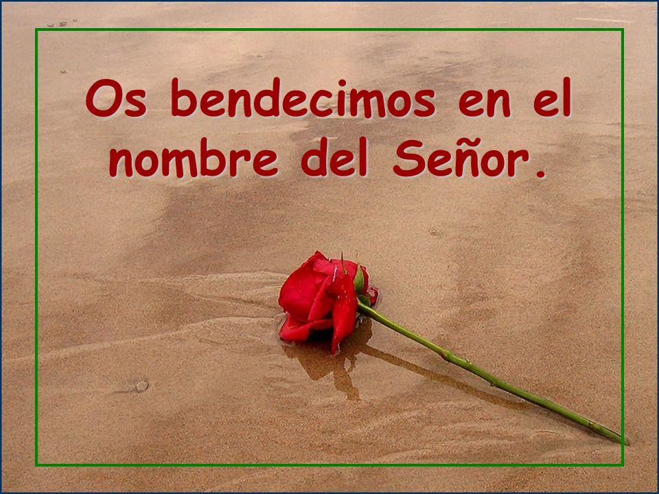 que no llena la mano del segador ni la brazada del que agavilla; ni les dicen los que pasan: Que el Señor te bendiga.