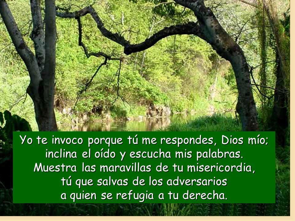 Yo te invoco porque tú me respondes, Dios mío; inclina el oído y escucha mis palabras.