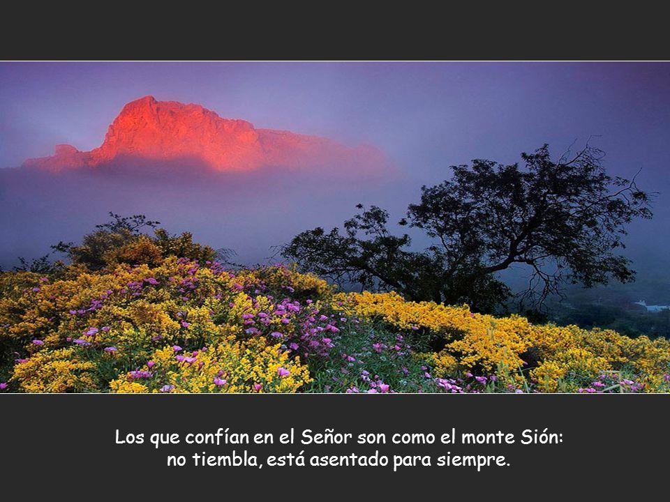 Los que confían en el Señor son como el monte Sión: no tiembla, está asentado para siempre.