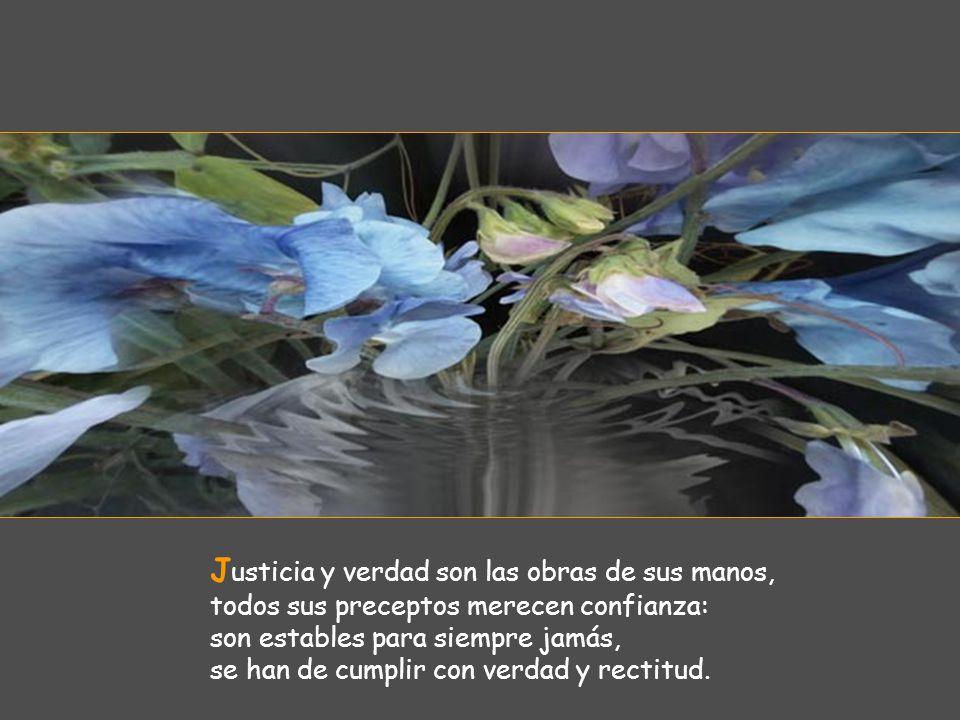 J usticia y verdad son las obras de sus manos, todos sus preceptos merecen confianza: son estables para siempre jamás, se han de cumplir con verdad y rectitud.