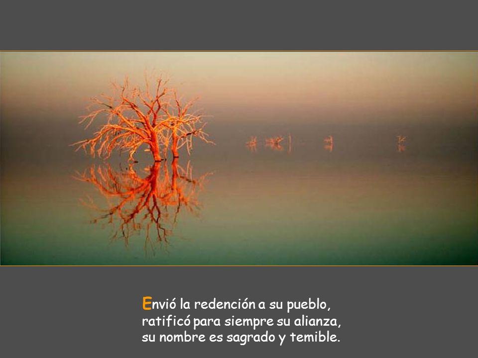 J usticia y verdad son las obras de sus manos, todos sus preceptos merecen confianza: son estables para siempre jamás, se han de cumplir con verdad y