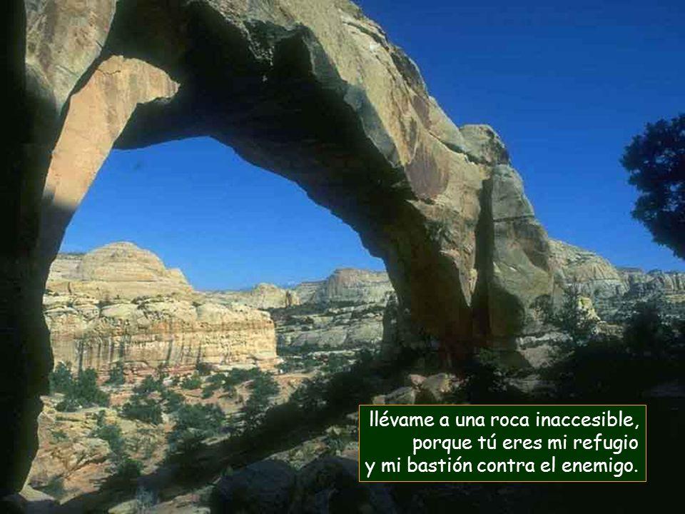 llévame a una roca inaccesible, porque tú eres mi refugio y mi bastión contra el enemigo.