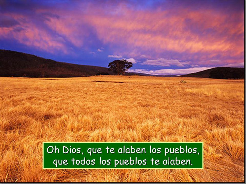 El Señor tenga piedad y nos bendiga, ilumine su rostro sobre nosotros; conozca la tierra tus caminos, todos los pueblos tu salvación.