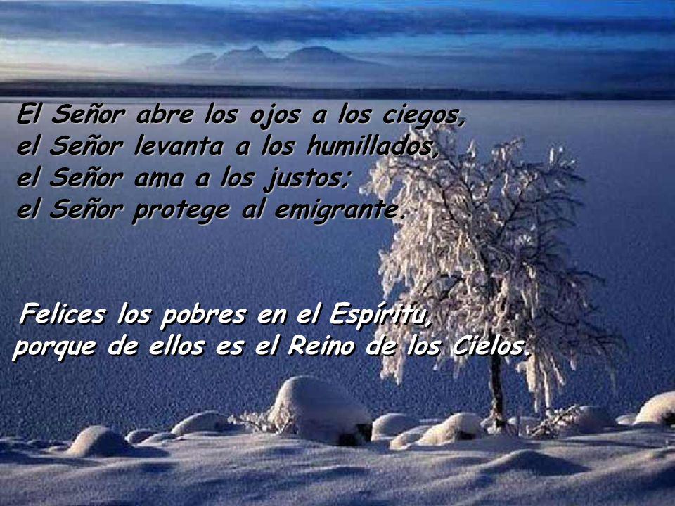 El Señor abre los ojos a los ciegos, el Señor levanta a los humillados, el Señor ama a los justos; el Señor protege al emigrante.