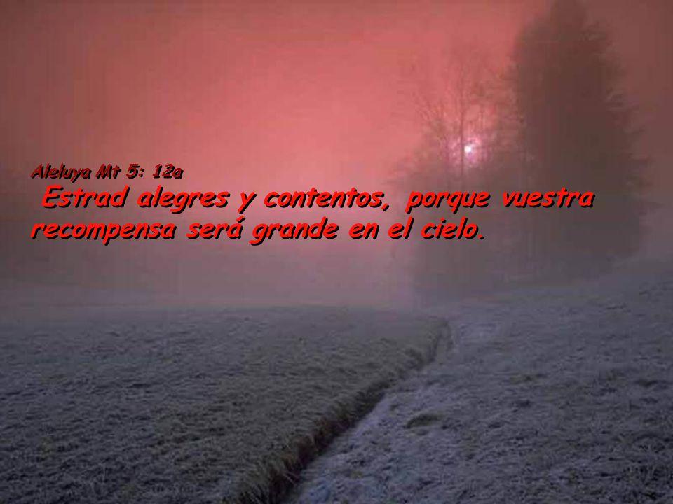 Aleluya Mt 5: 12a Estrad alegres y contentos, porque vuestra recompensa será grande en el cielo.