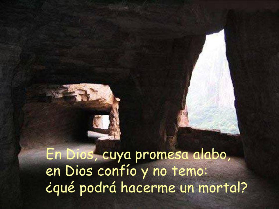 En Dios, cuya promesa alabo, en Dios confío y no temo: ¿qué podrá hacerme un mortal?