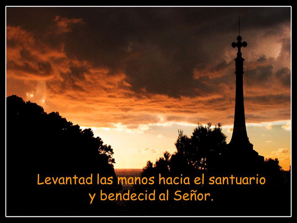 Y ahora bendecid al Señor, los siervos del Señor, los que pasáis la noche en la casa del Señor.