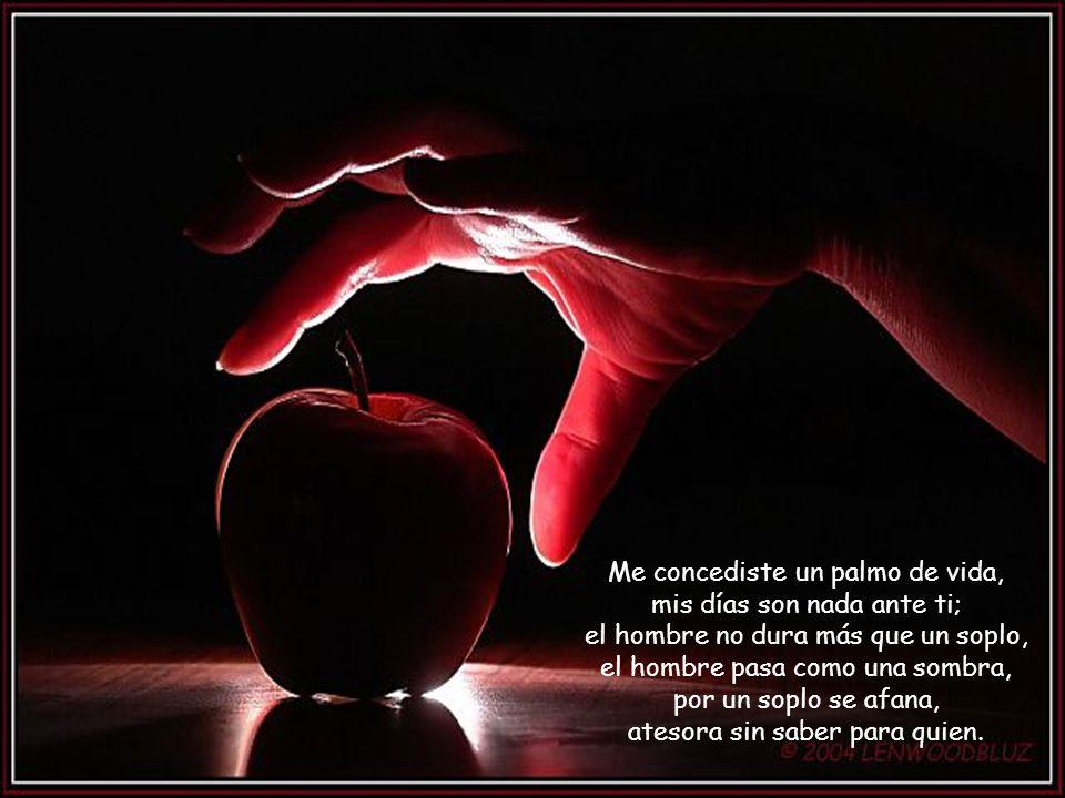 Me concediste un palmo de vida, mis días son nada ante ti; el hombre no dura más que un soplo, el hombre pasa como una sombra, por un soplo se afana, atesora sin saber para quien.