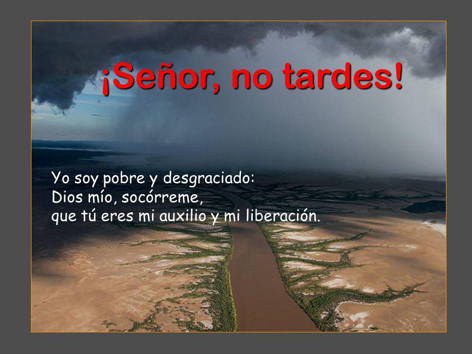 Yo soy pobre y desgraciado: Dios mío, socórreme, que tú eres mi auxilio y mi liberación.