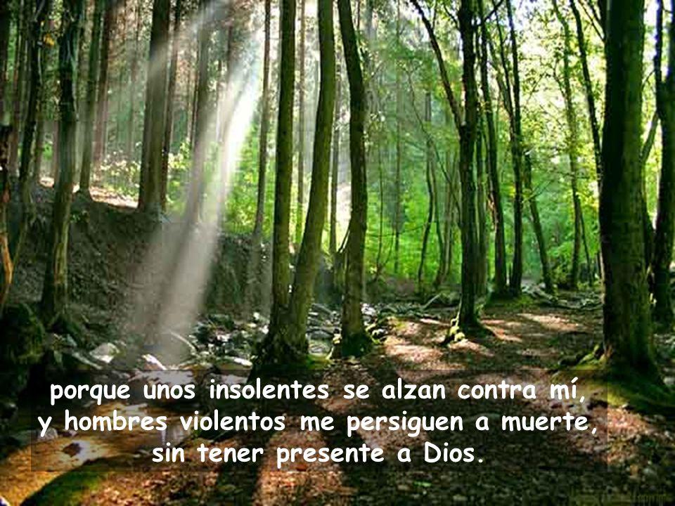 Oh Dios, sálvame por tu nombre, sal por mí con tu poder.