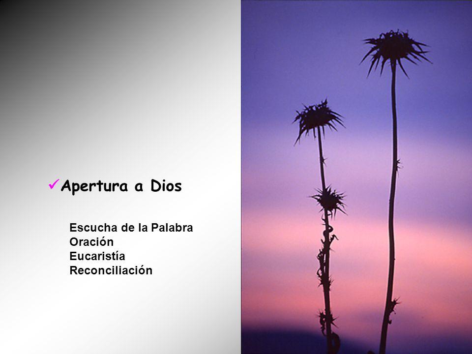 Apertura a Dios Escucha de la Palabra Oración Eucaristía Reconciliación