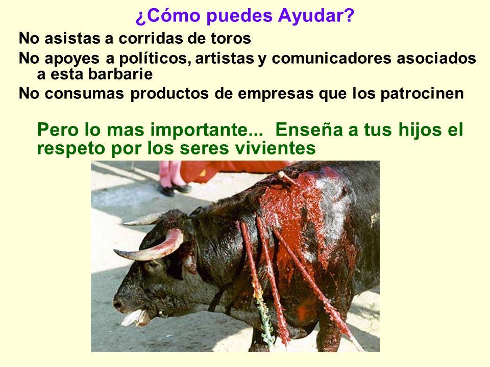 ¿Cómo puedes Ayudar? No asistas a corridas de toros No apoyes a políticos, artistas y comunicadores asociados a esta barbarie No consumas productos de