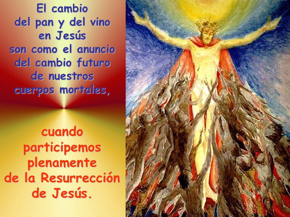 El cambio del pan y del vino en Jesús son como el anuncio del cambio futuro de nuestros cuerpos mortales, cuando participemos plenamente de la Resurrección de Jesús.