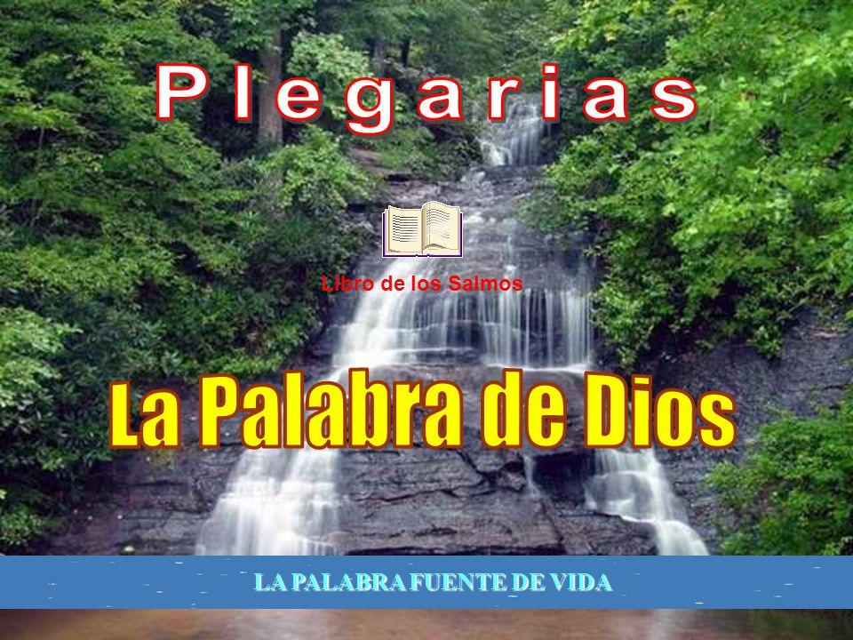 Los Salmos, compuestos por inspiración divina, desde los orígenes de la Iglesia sirvieron admirablemente para fomentar la piedad de los fieles, que of