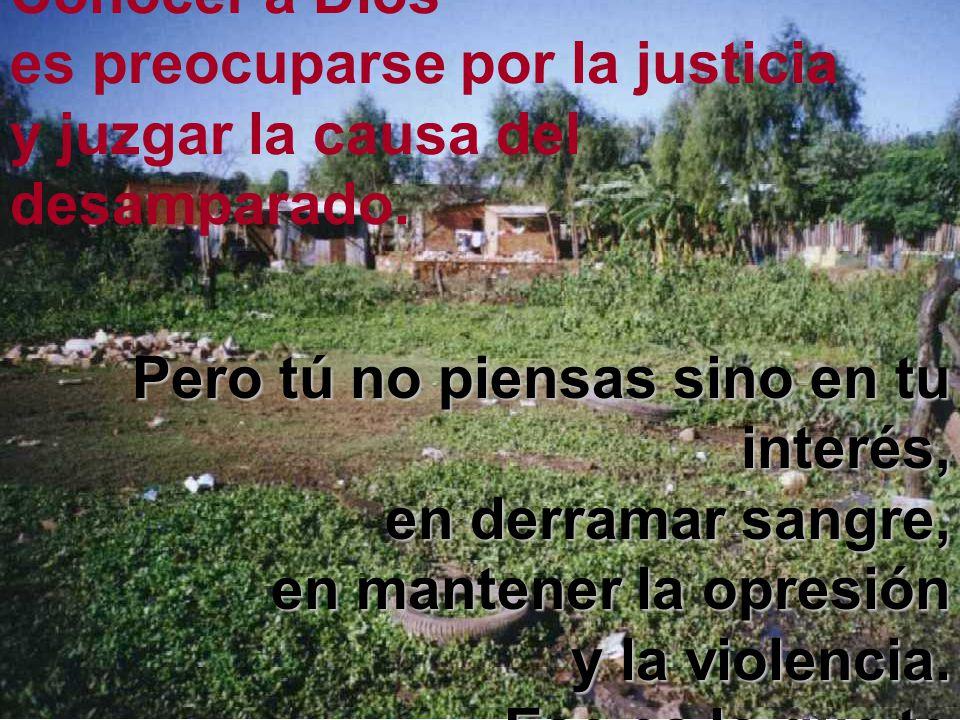 Conocer a Dios es preocuparse por la justicia y juzgar la causa del desamparado. Pero tú no piensas sino en tu interés, en derramar sangre, en mantene