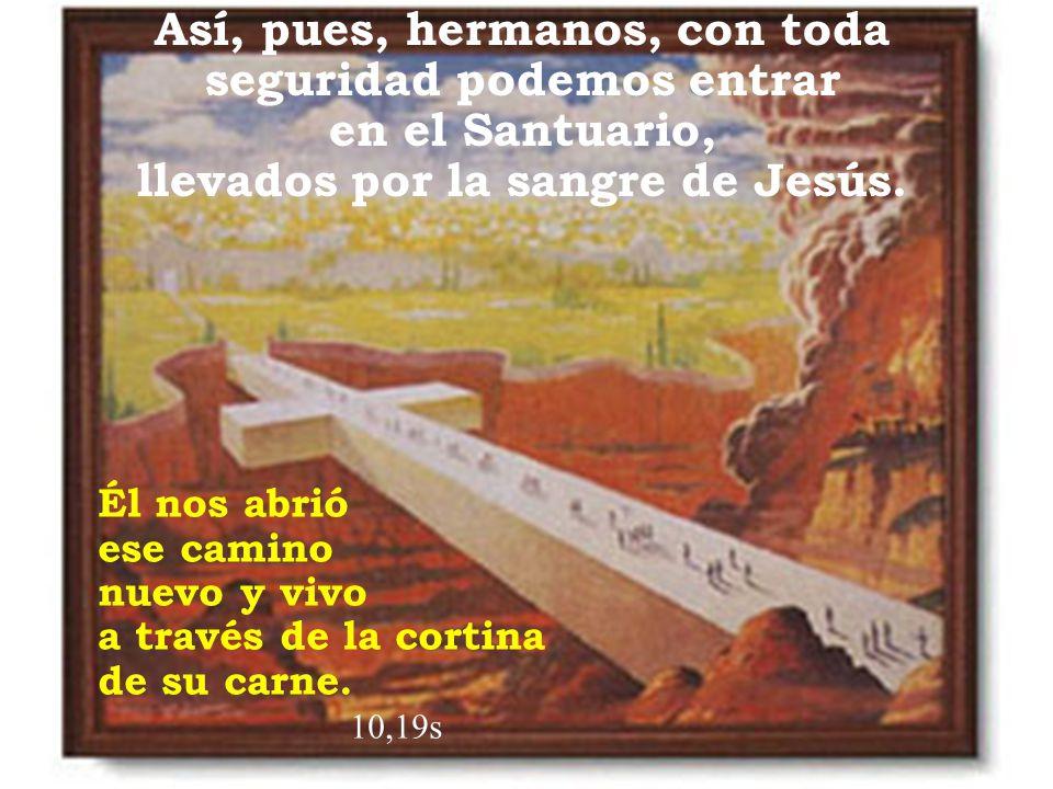 Así, pues, hermanos, con toda seguridad podemos entrar en el Santuario, llevados por la sangre de Jesús. Él nos abrió ese camino nuevo y vivo a través