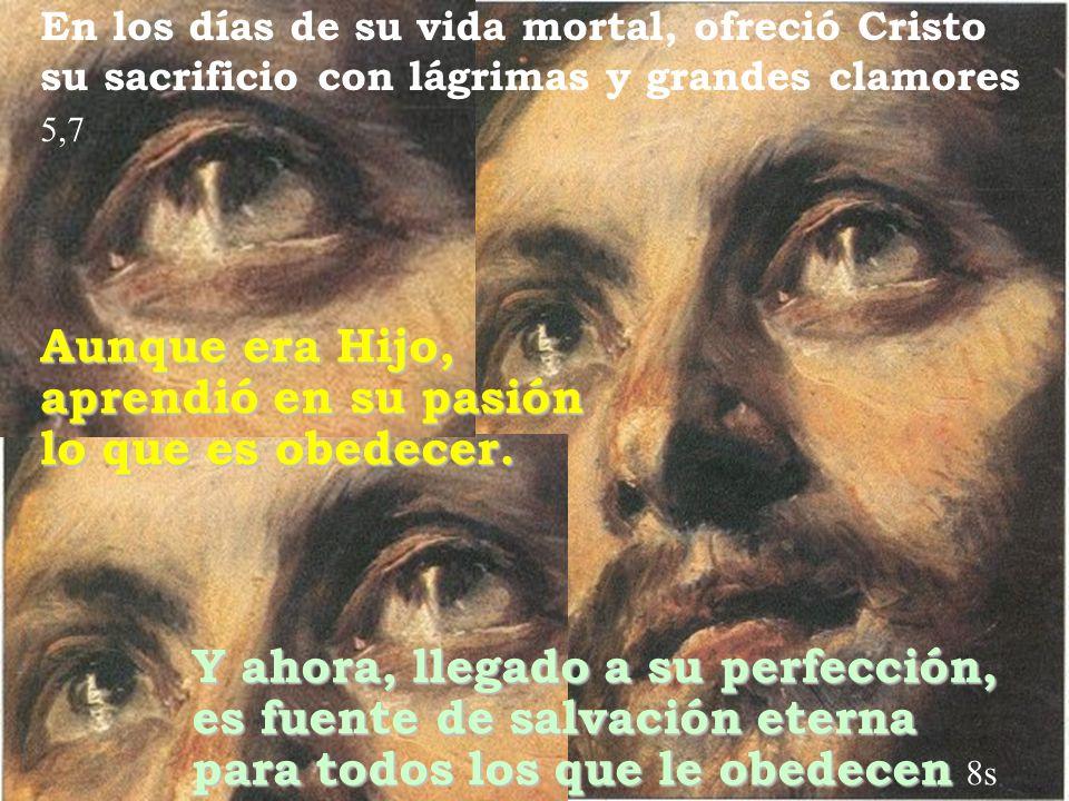 En los días de su vida mortal, ofreció Cristo su sacrificio con lágrimas y grandes clamores 5,7 Aunque era Hijo, aprendió en su pasión lo que es obede