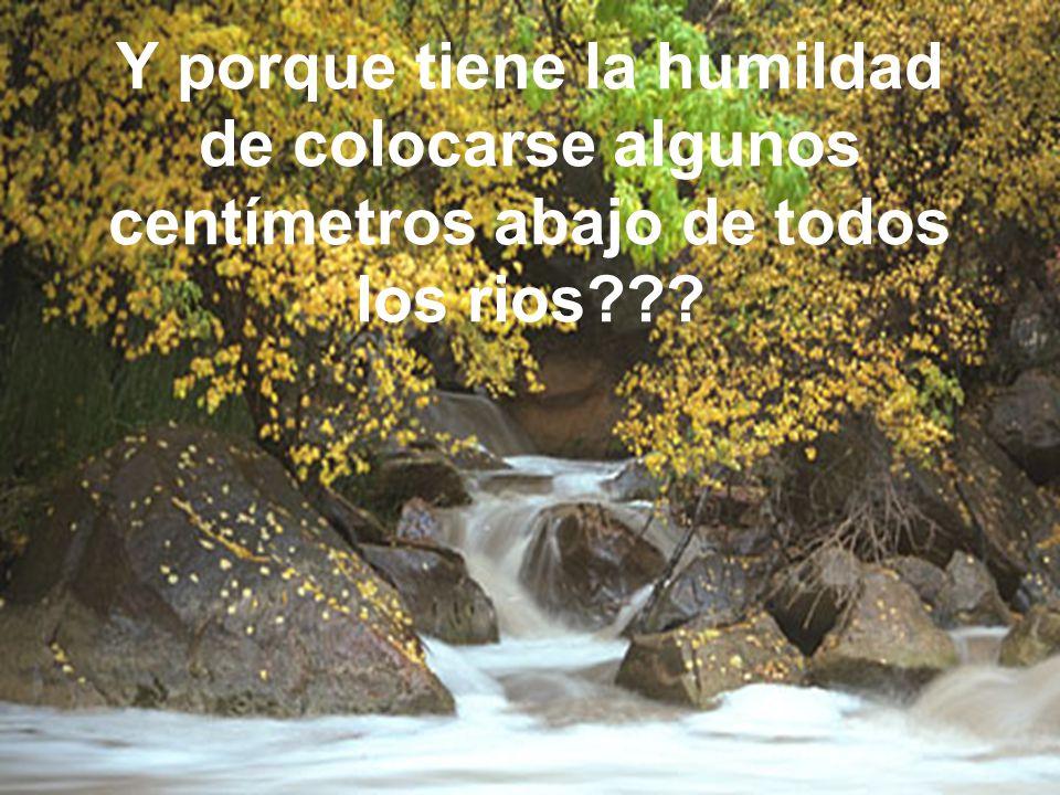 Y porque tiene la humildad de colocarse algunos centímetros abajo de todos los rios???