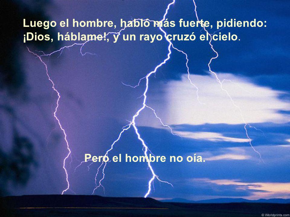 Luego el hombre, habló más fuerte, pidiendo: ¡Dios, háblame!, y un rayo cruzó el cielo. Pero el hombre no oía.