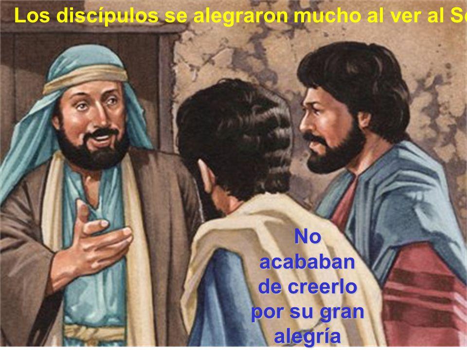 No acababan de creerlo por su gran alegría Los discípulos se alegraron mucho al ver al Señor.