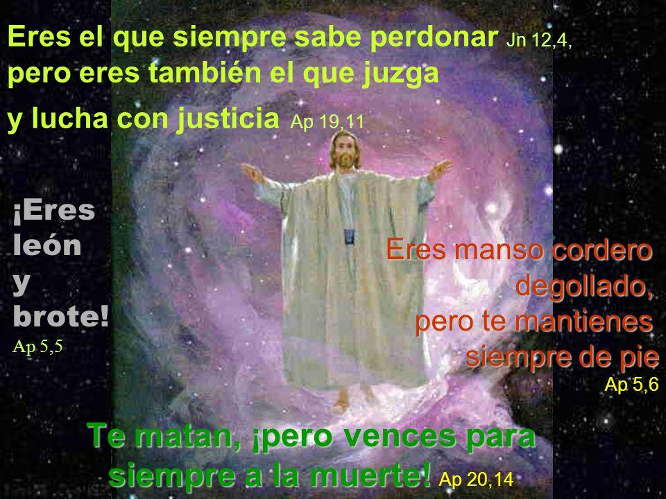 Eres el que siempre sabe perdonar Jn 12,4, pero eres también el que juzga y lucha con justicia Ap 19,11Te matan, ¡pero vences para siempre a la muerte