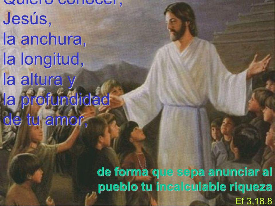 Quiero conocer, Jesús, la anchura, la longitud, la altura y la profundidad de tu amor, de forma que sepa anunciar al pueblo tu incalculable riqueza Ef