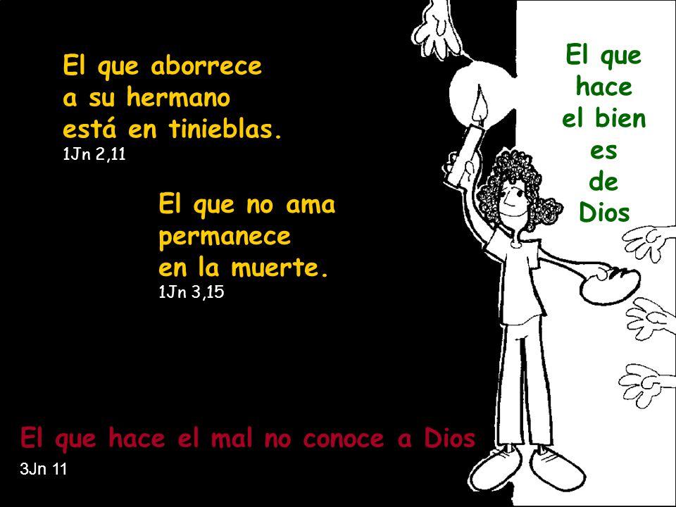 a a El que aborrece a su hermano está en tinieblas. 1Jn 2,11 El que no ama permanece en la muerte. 1Jn 3,15 El que hace el mal no conoce a Dios 3Jn 11