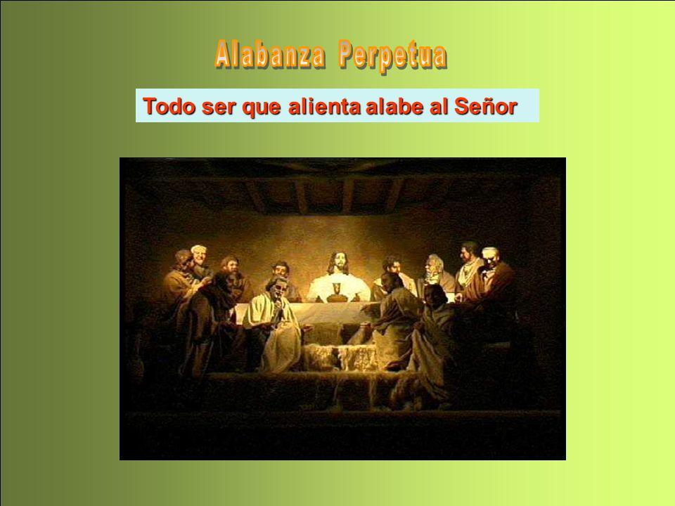 Todo ser que alienta alabe al Señor Todo ser que alienta alabe al Señor (Sal 150,4)