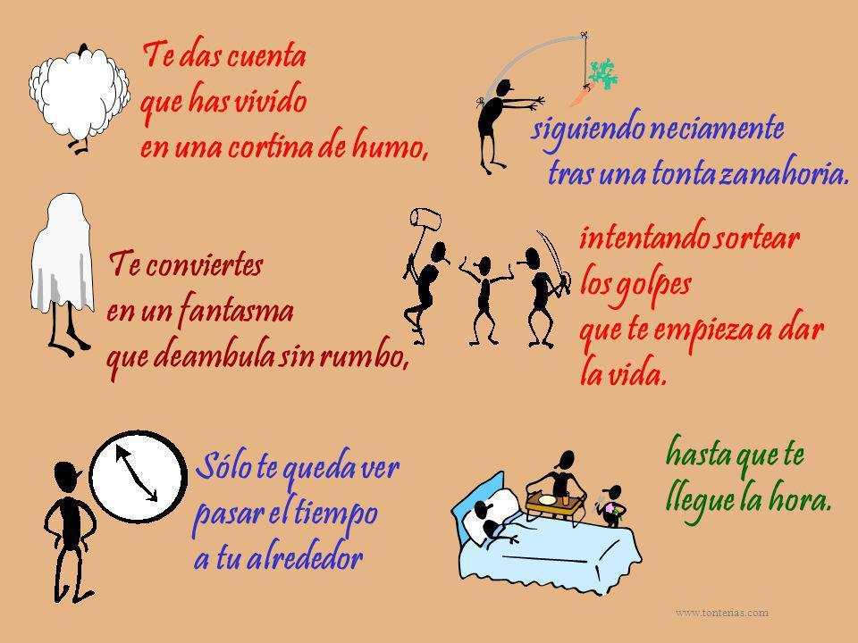 www.tonterias.com Después de este análisis realista me ha venido una idea a la cabeza, para llevarla a la práctica en mi vida.