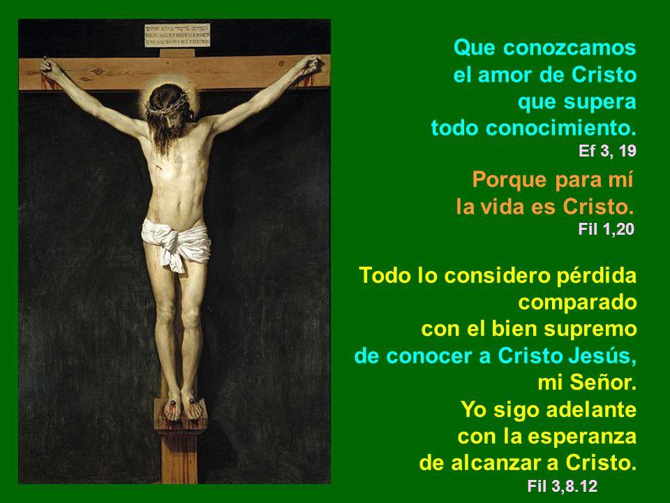 Que conozcamos el amor de Cristo que supera todo conocimiento. Ef 3, 19 Porque para mí la vida es Cristo. Fil 1,20 Todo lo considero pérdida comparado