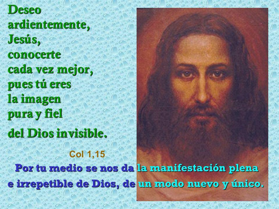 Deseo ardientemente, Jesús, conocerte cada vez mejor, pues tú eres la imagen pura y fiel del Dios invisible. Col 1,15 Por tu medio se nos da la manife