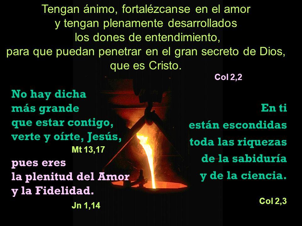 No hay dicha más grande que estar contigo, verte y oírte, Jesús, Mt 13,17 pues eres la plenitud del Amor y la Fidelidad. Jn 1,14 En ti están escondida