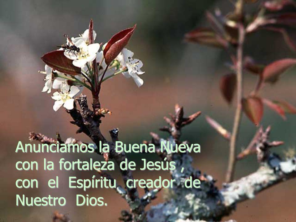Anunciamos la Buena Nueva con la fortaleza de Jesús, con el Espíritu creador de Nuestro Dios.