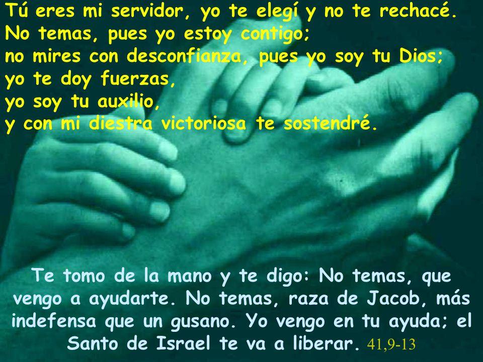 Tú eres mi servidor, yo te elegí y no te rechacé. No temas, pues yo estoy contigo; no mires con desconfianza, pues yo soy tu Dios; yo te doy fuerzas,