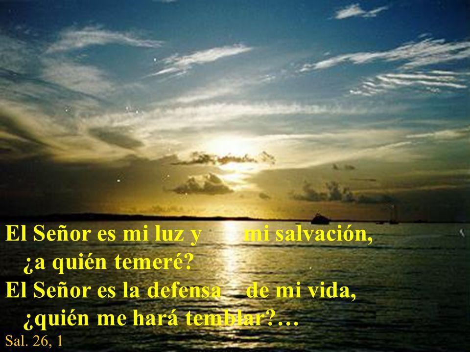El Señor es mi luz y mi salvación, ¿a quién temeré? El Señor es la defensa de mi vida, ¿quién me hará temblar?… Sal. 26, 1