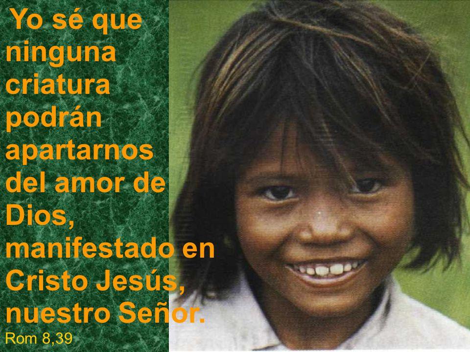 Yo sé que ninguna criatura podrán apartarnos del amor de Dios, manifestado en Cristo Jesús, nuestro Señor. Rom 8,39
