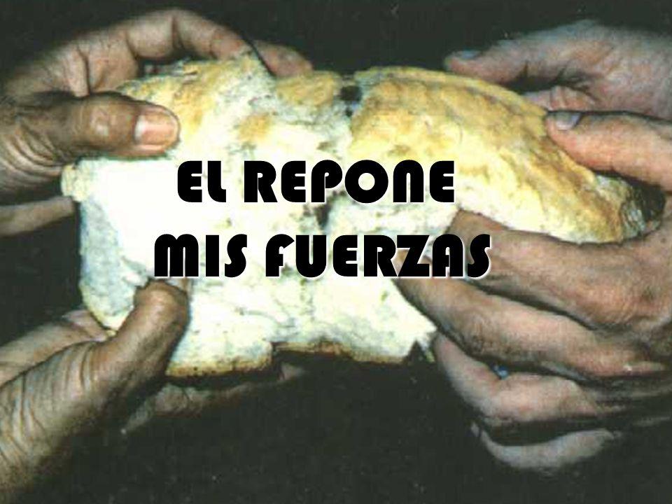 EL REPONE MIS FUERZAS