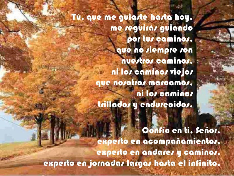 Tú, que me guiaste hasta hoy, me seguirás guiando por tus caminos, que no siempre son nuestros caminos, ni los caminos viejos que nosotros marcamos, n
