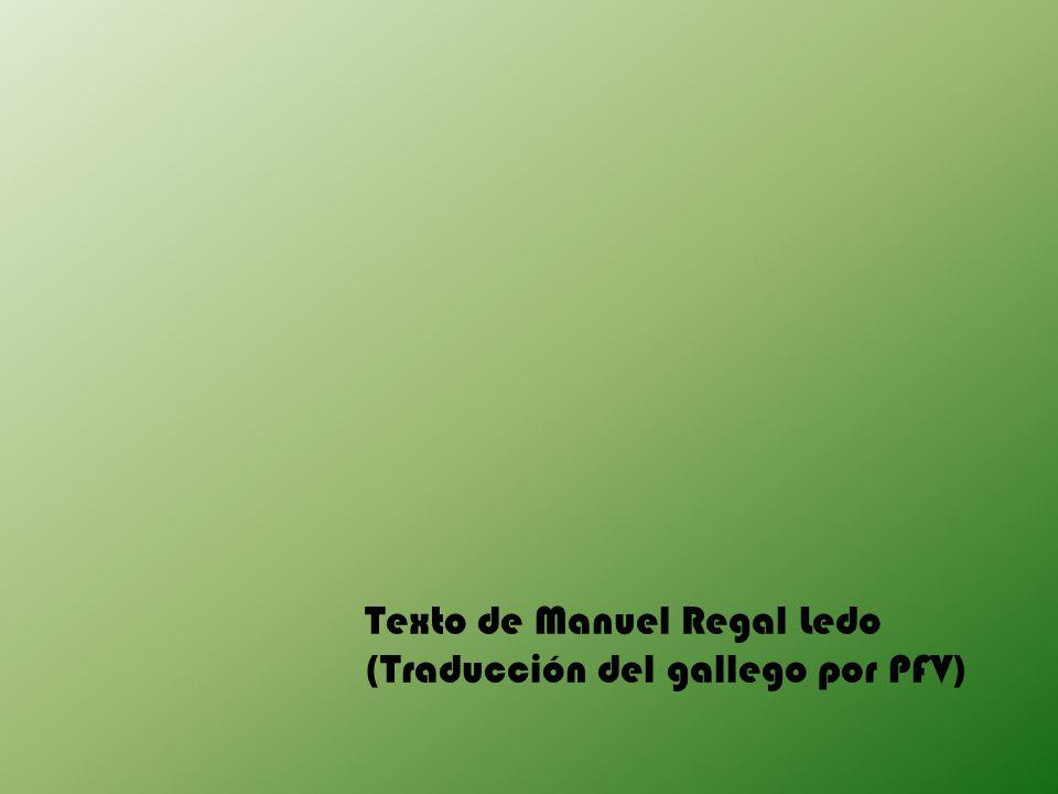 Texto de Manuel Regal Ledo (Traducción del gallego por PFV)