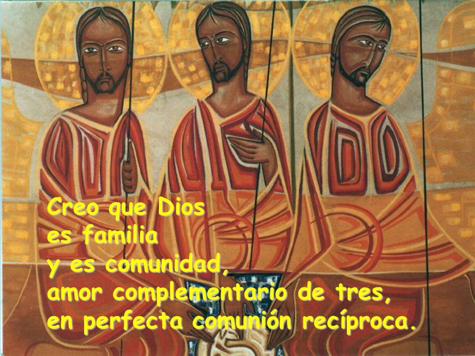 Creo que Dios es familia y es comunidad, amor complementario de tres, en perfecta comunión recíproca.