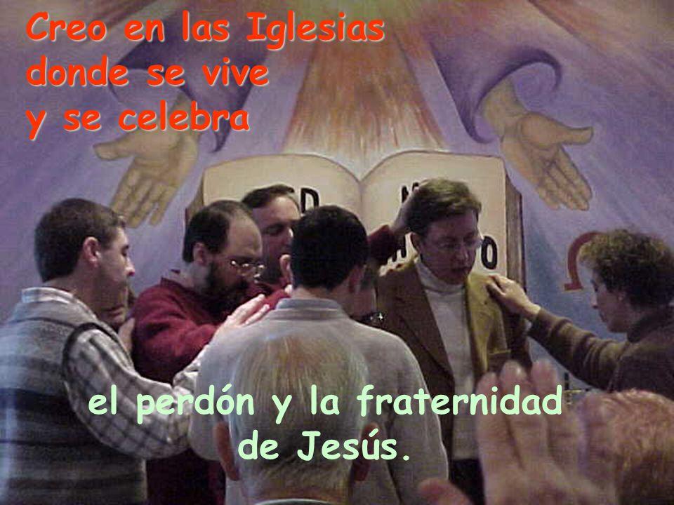 Creo en las Iglesias donde se vive y se celebra el perdón y la fraternidad de Jesús.